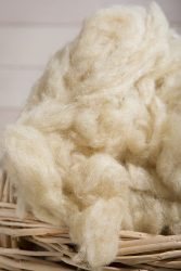 carded wool 2