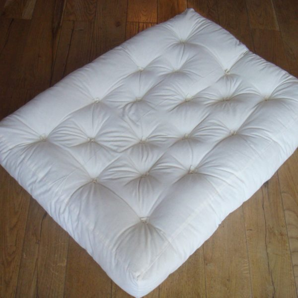 Couch cushion insert
