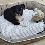 natural wool pet bed wog bed