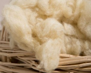 Home of Wool Wool Stuffing All Natural Oeko-Tex Certified Close up