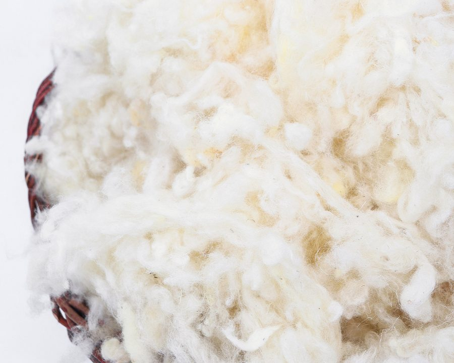 Home of Wool all-natural GOTS certified wool stuffing - close up texture detail